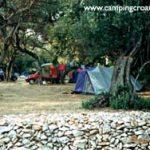 Camp site Pod Maslinom Orasac near Dubrovnik